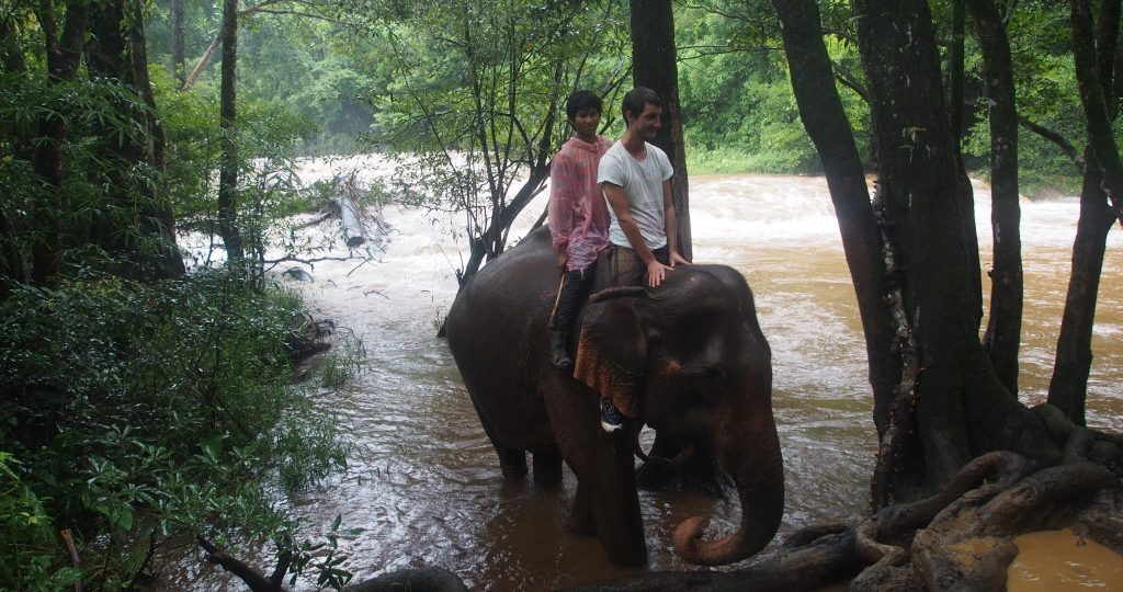 The mahout indicated that it is ok to sit on her as she exits the rapids.