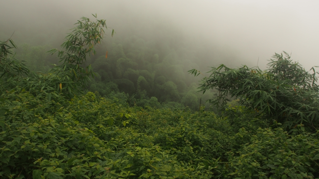 Laos has some of the most amazing scenery we've seen so far on the trip.  The clouds rolled in quickly.